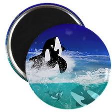 Fantastic orcas Magnets