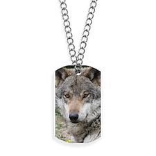 Wolf 013 Dog Tags