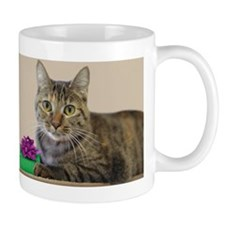 Cat with Gift Small Mug
