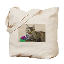 Cat with Gift Tote Bag