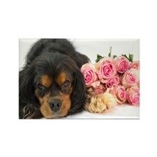 Black Cavalier King Charles  With Rectangle Magnet