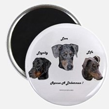 Unique Doberman rescue Magnet