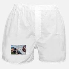CREATION / Black Lab (#2) Boxer Shorts