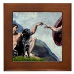 CREATION / Black Lab (#2) Framed Tile