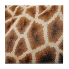Reticulated Giraffe Wild Animal Print Tile Coaster
