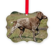 german shorthair pointer full Ornament