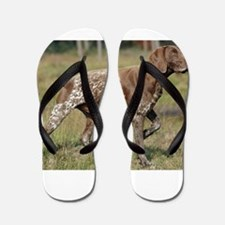 german shorthair pointer full Flip Flops