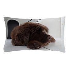 Olivia  8wk Newfoundland Pillow Case