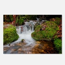 Far Country Falls Postcards (Package of 8)