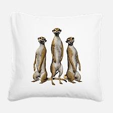 Meerkat Trio Square Canvas Pillow