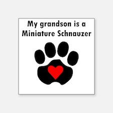 My Grandson Is A Miniature Schnauzer Sticker