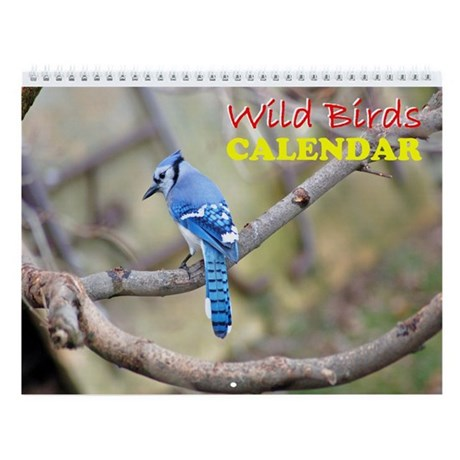 Wild Birds Wall Calendar