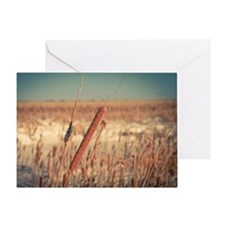 Cattails at Sunrise Greeting Cards