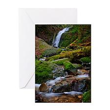 Coal Creek Falls Greeting Cards