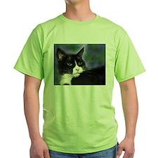 Funny Tuxedo cats T-Shirt