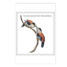 Silver-breasted Broadbill Postcards (Package of 8)