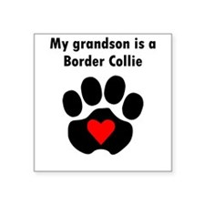My Grandson Is A Border Collie Sticker