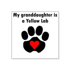 My Granddaughter Is A Yellow Lab Sticker