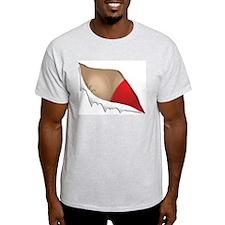 Nipplegate 2004 Peek T-Shirt