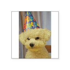 Happy Birthday Beau! Sticker