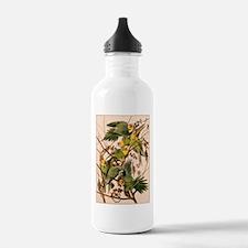 Print of Parakeets Water Bottle