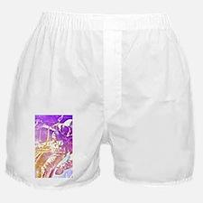 Spaceman Boxer Shorts