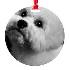 Edit 2 Ornament