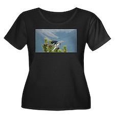 Bird flapping in Banff National Park in Canada Plu