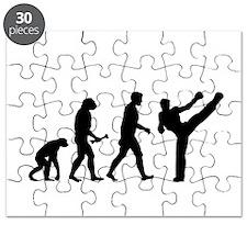 Kickboxer Evolution Puzzle