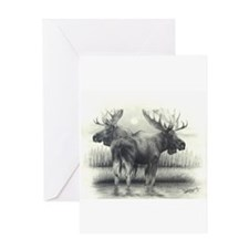 Wild Life Greeting Cards
