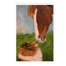 Sable Sheltie and Horse Postcards (Package of 8)