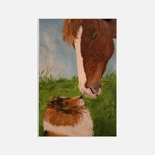 Sable Sheltie and Horse Rectangle Magnet