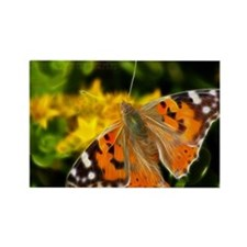 Painted lady Butterfly Magnets
