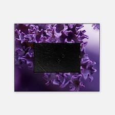 Purple Liquid Art Picture Frame