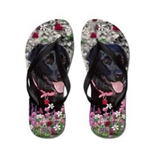 Abby Black Lab in Flowers Flip Flops