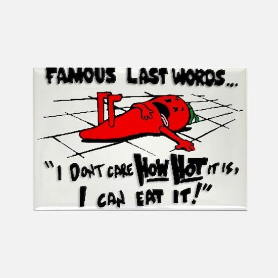 Famous Last Words Rectangle Magnet