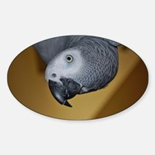 African Grey Parrot face Decal