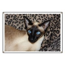 Seal Point Siamese Cat Jazell with a leopar Banner