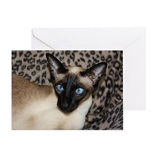 Seal Point Siamese Cat Jazell with a Greeting Card