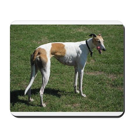 greyhound full Mousepad