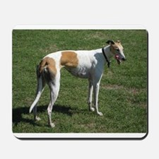 greyhound full Mousepad