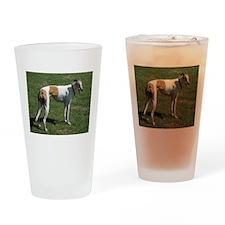 greyhound full Drinking Glass