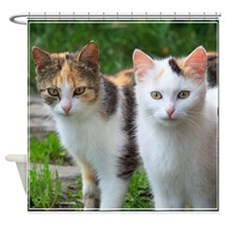 Calico Cats Shower Curtain