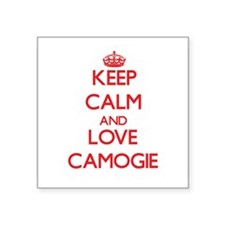 Keep calm and love Camogie Sticker