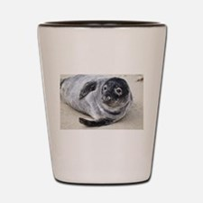Grey Seal Shot Glass