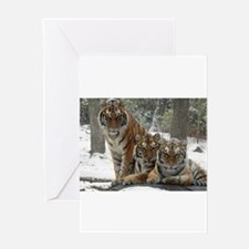 TIGER IN THE SNOW Greeting Cards