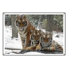 TIGER IN THE SNOW Banner