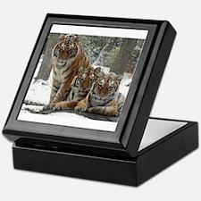 TIGER IN THE SNOW Keepsake Box