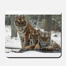 TIGER IN THE SNOW Mousepad