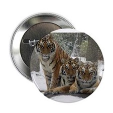 "TIGER IN THE SNOW 2.25"" Button"